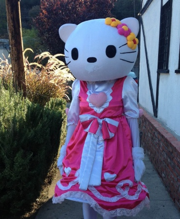 Hello Miss Kitty